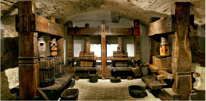 Malokarpatské múzeum